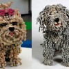 Реалистичные скульптуры собак из старых велосипедных цепей от Нирит Левав. (6 фото)