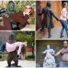 Прикольные фото со скульптурами. (19 фото)