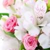 Служба доставки цветов – верный помощник (3 фото)