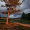 Красивые фото природы. Закаты. (21 фото)
