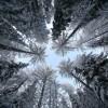 Красивые фото природы. (17 фото)