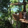 Ресторан на дереве … (8 фото)