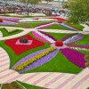 Фото. Цветочный сад Аль-Айн. (18 фото)