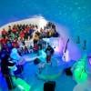 Музыкальные инструменты из льда. (14 фото)