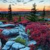 Красивые фото природы. (13 фото)