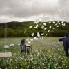 Сюрреалистические фотоманипуляции от Alastair Magnaldo. (13 фото)