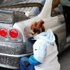Необычный тюнинг Nissan Skyline GTR. (6 фото)
