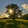 Красивые фото природы. (14 фото)