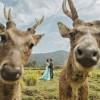 Прикольные свадебные фото. (20 фото)