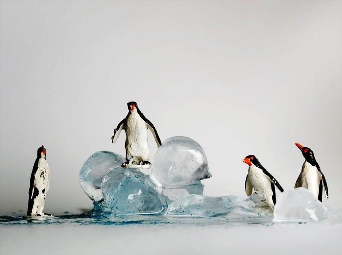 Изумительные фотоманипуляции от Franck Allais. (9)