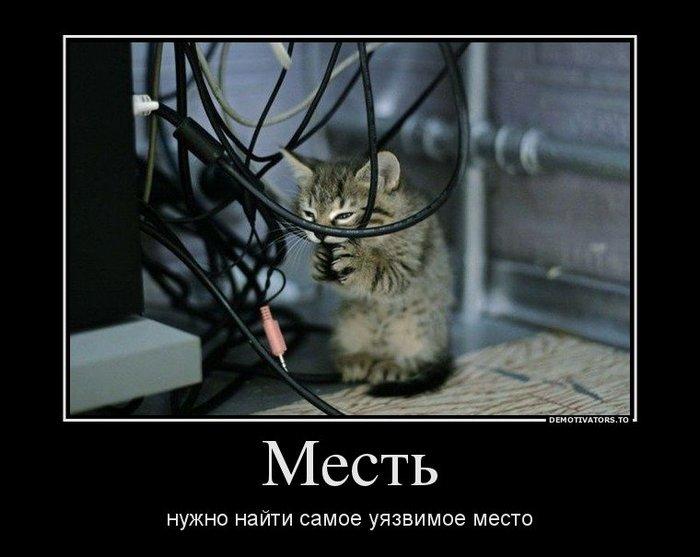Демотиваторы. (25)