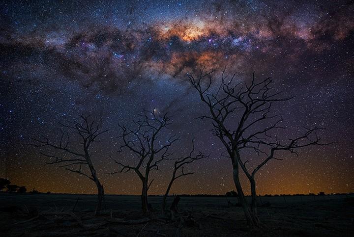 Звездные пейзажи от профессионального фотографа Линкольна Харрисона (3)
