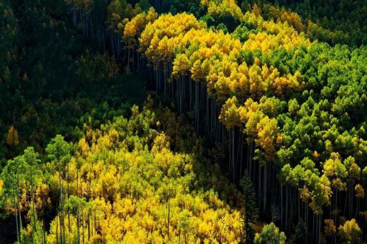 фото, природа, красивые фото природы, фотопейзажи, осень (9)
