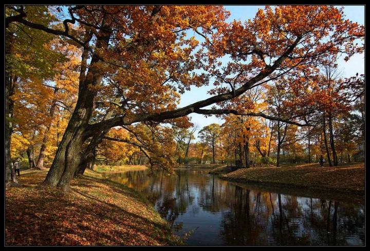 фото, природа, красивые фото природы, фотопейзажи (17)