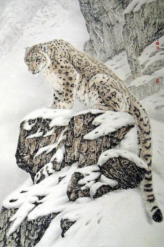фото, животные (1)