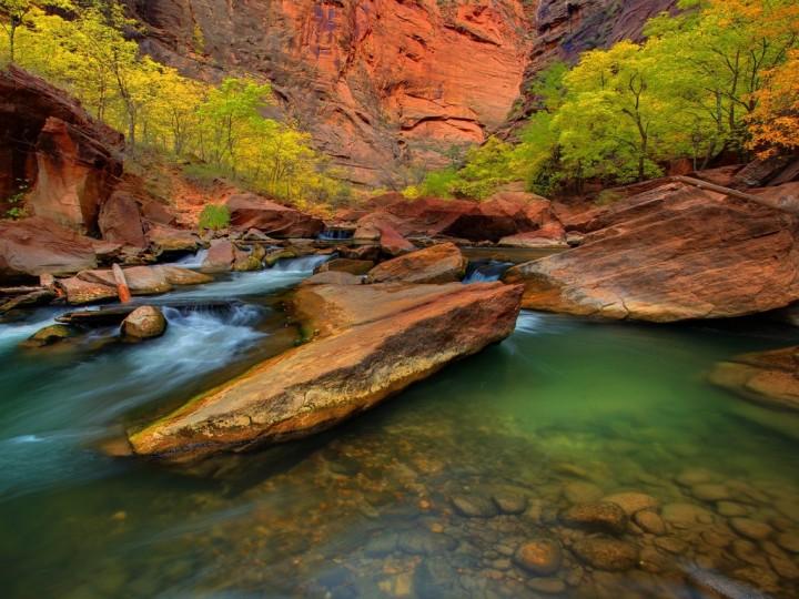 фото, природа, красивые фото природы, фотопейзажи (15)