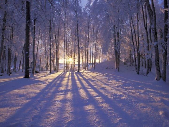 фото, природа, красивые фото природы, фотопейзажи, зима (2)