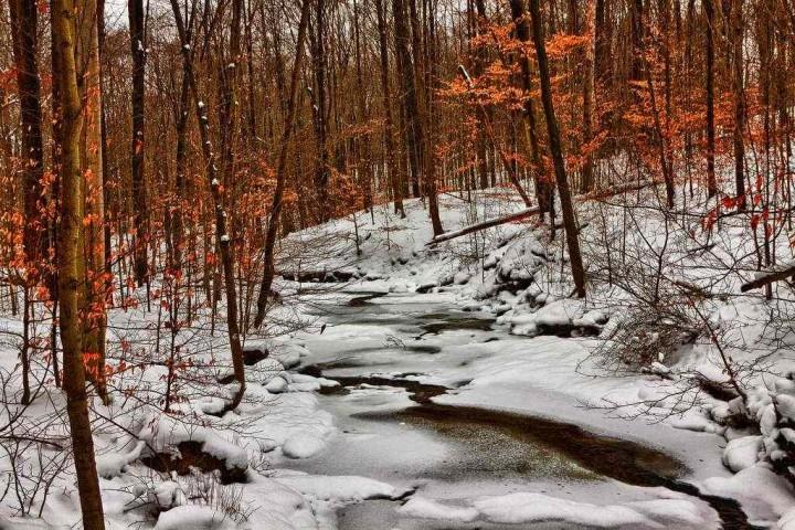фото, природа, красивые фото природы, фотопейзажи, зима (12)