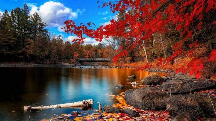 фото, природа, красивые фото природы, фотопейзажи (3)