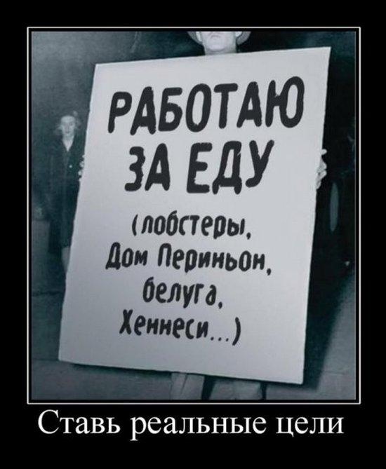 Демотиваторы (17)