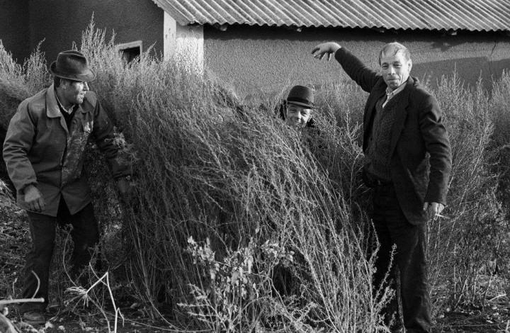 Фото, СССР, ностальгия, ретро фото, люди (3)