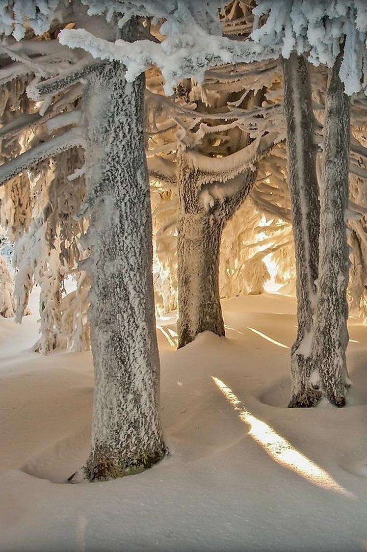 природа, красивые фото природы, фотопейзажи, зима (1)