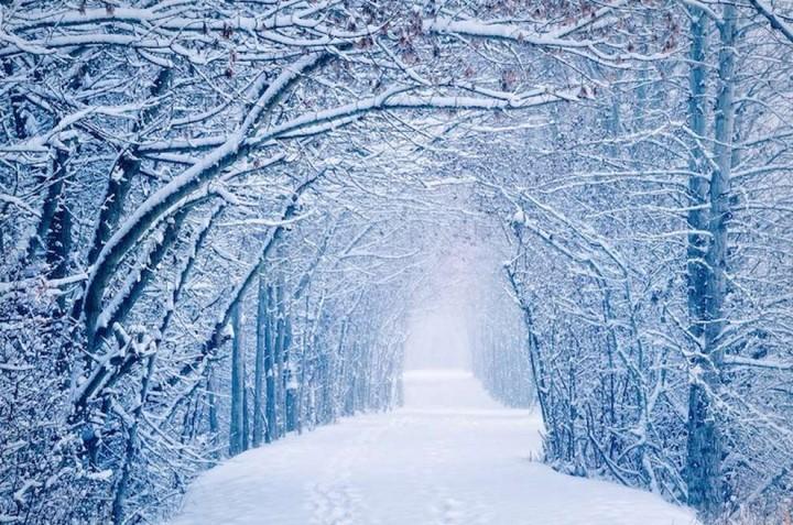 природа, красивые фото природы, фотопейзажи, зима (10)