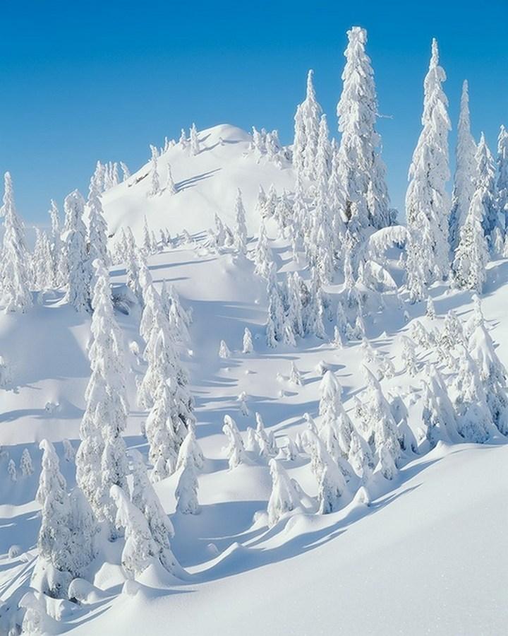 природа, красивые фото природы, фотопейзажи, зима (8)