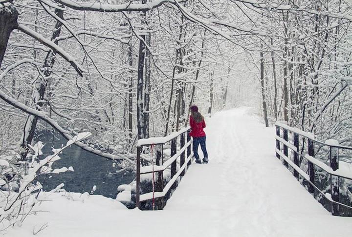 природа, красивые фото природы, фотопейзажи, зима (2)