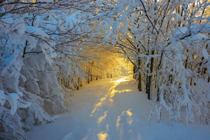 природа, красивые фото природы, фотопейзажи, зима (6)