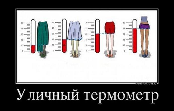 Демотиваторы (13)