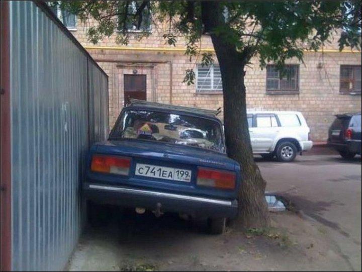 авто, аварии, курьёзы (3)