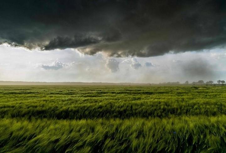 фото, природа, фотопейзажи (14)
