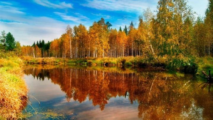 природа, красивые фото природы, фотопейзажи, осень (5)