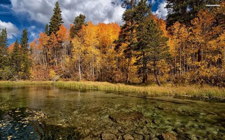 природа, красивые фото природы, фотопейзажи, осень (11)
