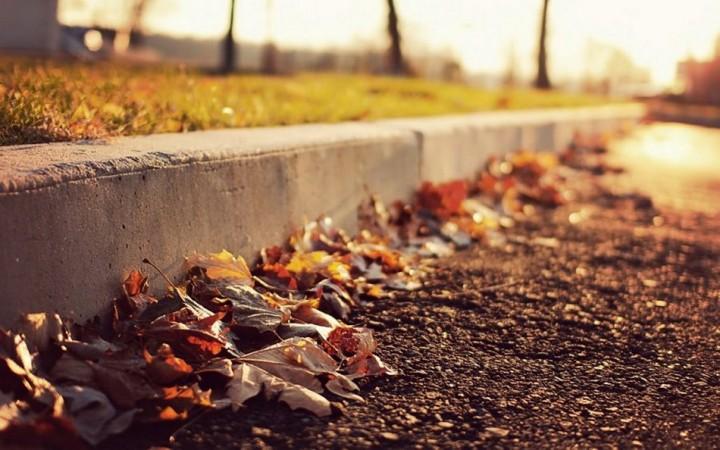 природа, красивые фото природы, фотопейзажи, осень (9)