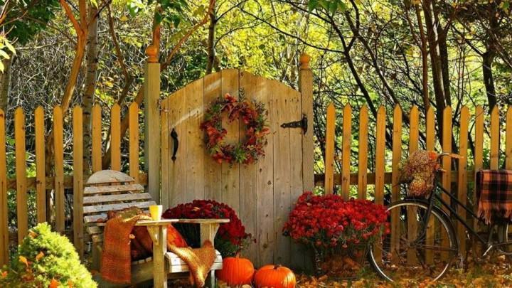 природа, красивые фото природы, фотопейзажи, осень (2)