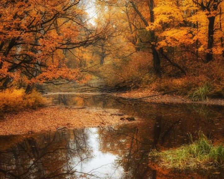 природа, красивые фото природы, фотопейзажи, осень (19)