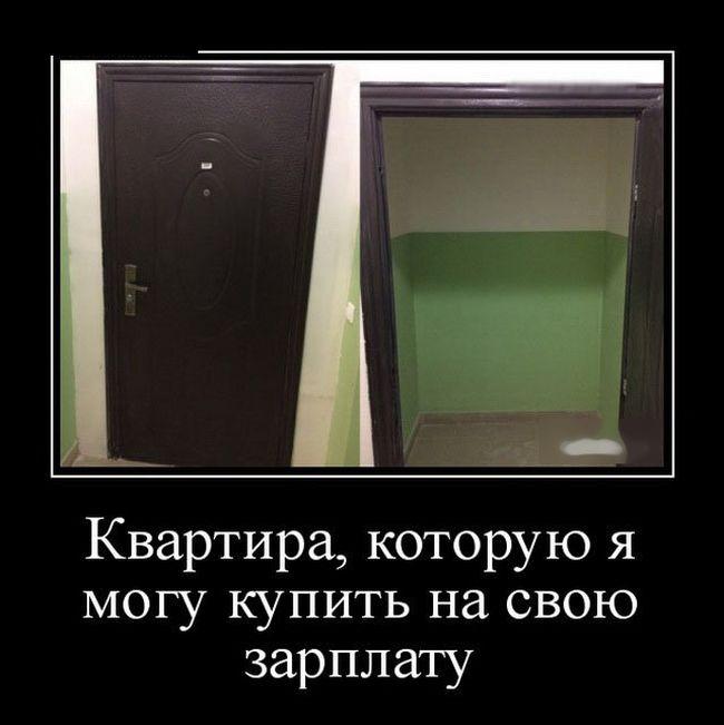 Демотиваторы (12)