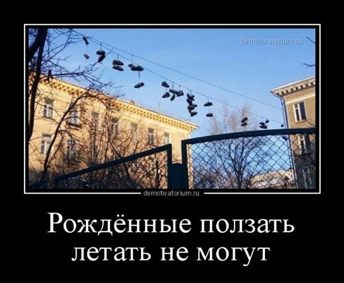 Демотиваторы (8)