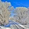 Фото. Зимняя сказка. (17 фото)