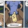 Фото. Полезный комикс.