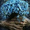 Фото. Руки и цветы.