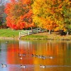 Красивые фото природы. Осень, осень. (24 фото)