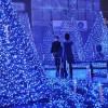 Рождественские ёлки и огни в городах мира. (15 фото)
