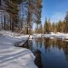 Зимние пейзажи от Максима Евдокимова. (20 фото)