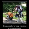 Демотиваторы. (24 фото)