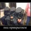 Демотиваторы. (31 фото)