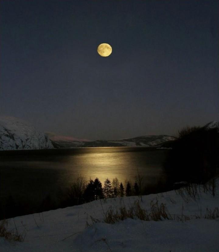 недостоверно лучшие фото недели рамблер пейзаж луна челюсти