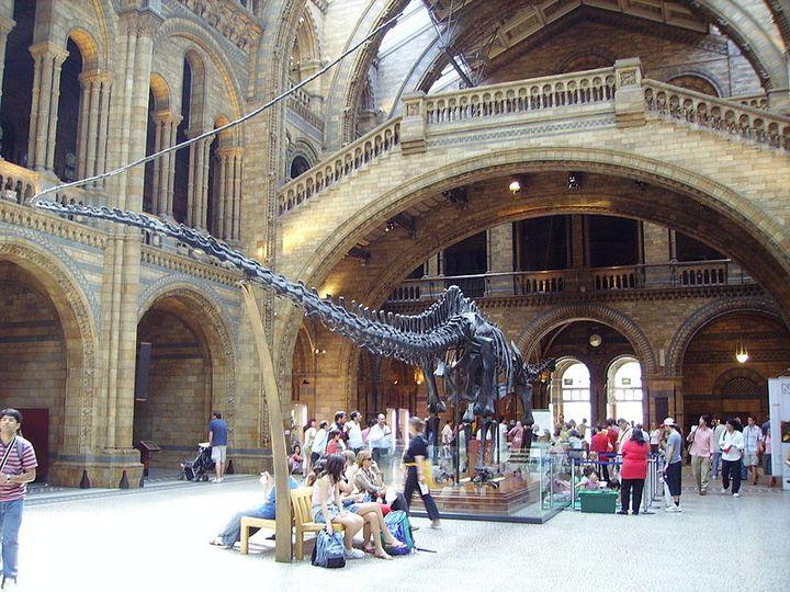 Музеи Лондона (3)